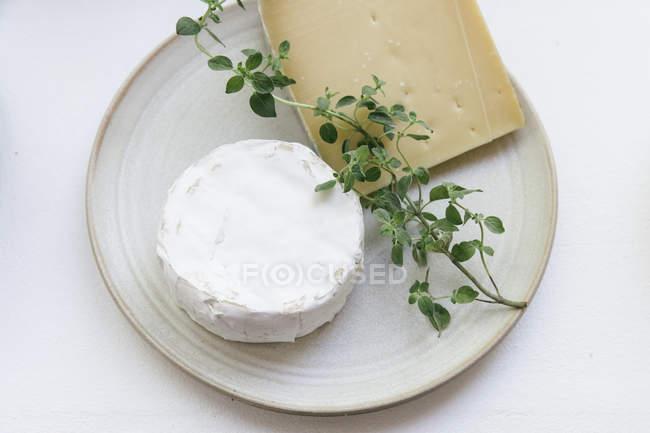 Обед или обед сцена с свежие сыры, вид сверху — стоковое фото