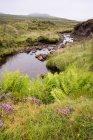 Pequeño arroyo en la Isla de Skye, Highland, Escocia, Reino Unido - foto de stock