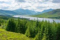 United Kingdom, Scotland, Highland, Invergarry, Highland Highlands at Invergarry — Stock Photo
