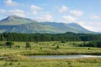 Royaume-Uni, Écosse, Highland, Spean Bridge, sur la route à Highland à Spean Bridge, paysage et forêt — Photo de stock