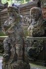 Indonesia, Bali, Kabedaten Gianyar, Foresta delle Scimmie di Ubud — Foto stock