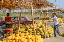 Uzbequistão, província de Buxoro, Jondor tumani, comerciantes de melão na estrada — Fotografia de Stock