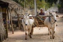 Мьянма (Бирма), Мандалай, Таунгтха, Таунг Ба, провинция Мандалай — стоковое фото