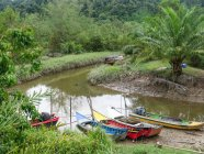 Thailand, Chang Wat Phang-nga, Tambon Khuekkhak, boats on the river in Talaenok — Stock Photo