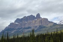 Canadá, Alberta, Banff, viagem de um dia ao Parque Nacional de Banff — Fotografia de Stock