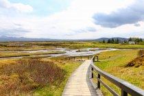 Извилистая набережная в зеленом ландшафте с рекой, Исландия — стоковое фото