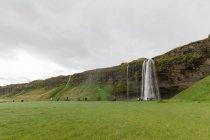 Islândia, paisagem natural com Prado de abd verde Svartifoss cachoeira — Fotografia de Stock