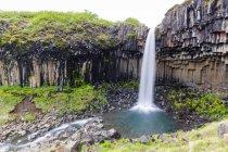 Long plan d'exposition de la cascade de Svartifoss, Islande — Photo de stock