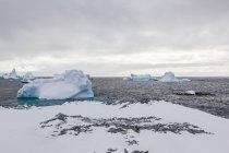 Vista panorâmica de icebergs na água Antártica — Fotografia de Stock