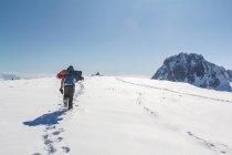 Антарктида, задньої зору людини, походи на снігоступах уздовж гірських трек — стокове фото
