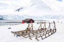 Antarctica, British Station N61, flock of penguins by wooden hut, sledges on foreground — стоковое фото