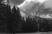 Австрія, Каринтія, Ферлах, Bodental, гори і ліси погляд — стокове фото