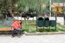 Peru, Qosqo, Ollantaytambo, Sleeping man on bench in Ollantaytambo — Stock Photo