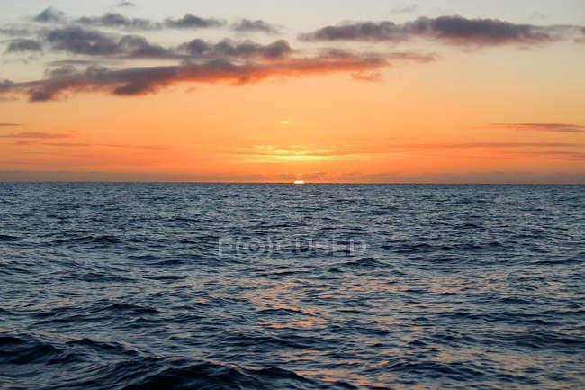 Нової Зеландії, Південного острова, Кентербері, Південної бухти, Kaikoura, Схід сонця на морі — стокове фото
