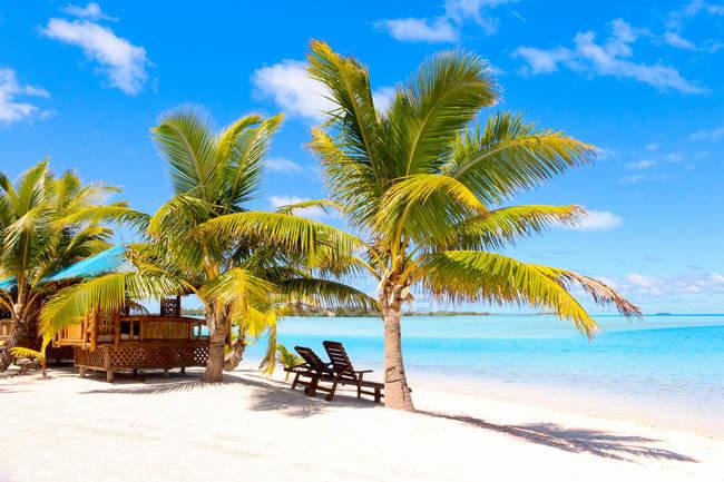 Îles Cook, Aitutaki, Lieu de villégiature tropical avec transats sur une plage de sable blanc sous les palmiers — Photo de stock