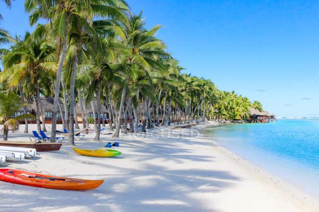 Îles Cook, Aitutaki, Station balnéaire tropicale avec plage de sable blanc sous les palmiers — Photo de stock