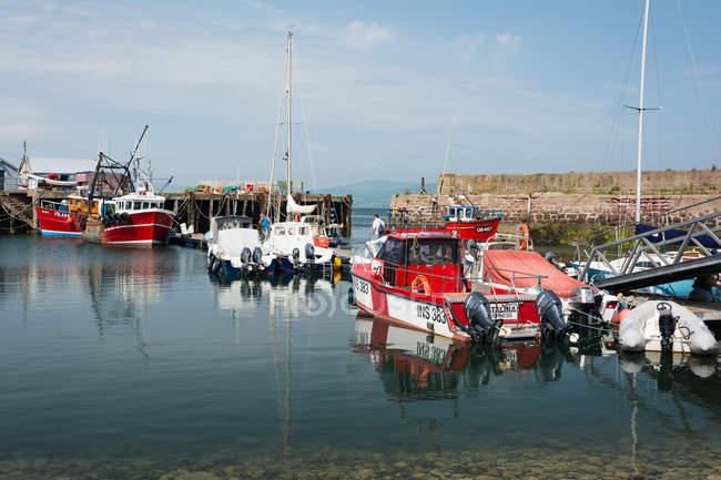 Reino Unido, Escocia, Highland, Cromarty, Puerto de Cromarty en la Isla Negra, puerto con barcos amarrados - foto de stock