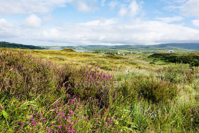 United Kingdom, Scotland, Highlands, Isle of Skye, Portree scenic green landscape with lake — Stock Photo