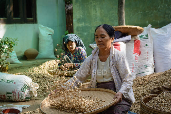 Myanmar (Burma), Mandalay Region, Taungtha, Taung Ba, Mandalay Province. The village mainly lives on peanut farming — Stock Photo