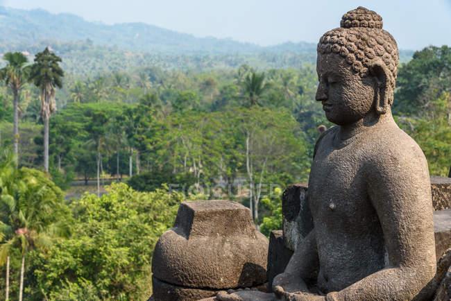 Індонезія, аеропорту Tengah Java, напрямку Magelang, Borobodur Buddhist temple, статуя Будди і природних ландшафтів у фоновому режимі — стокове фото