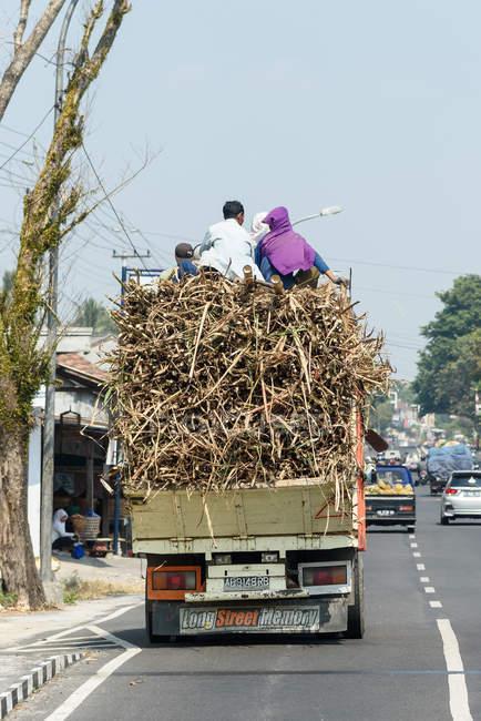 Вуличні пейзажі з людьми на вантажівках, повних цукрової тростини в Джок