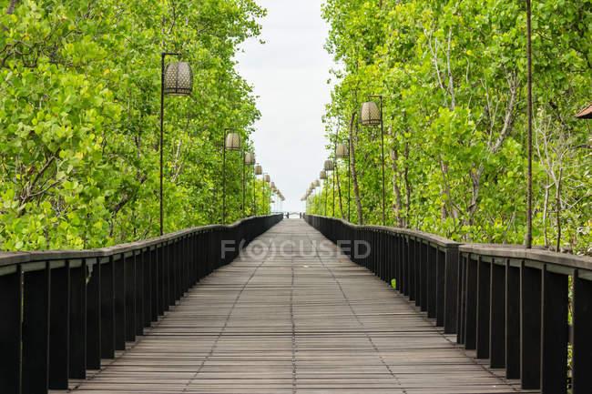 Ponte pedonale in legno nella foresta di Sulawesi Utara, Kota Manado, Indonesia — Foto stock