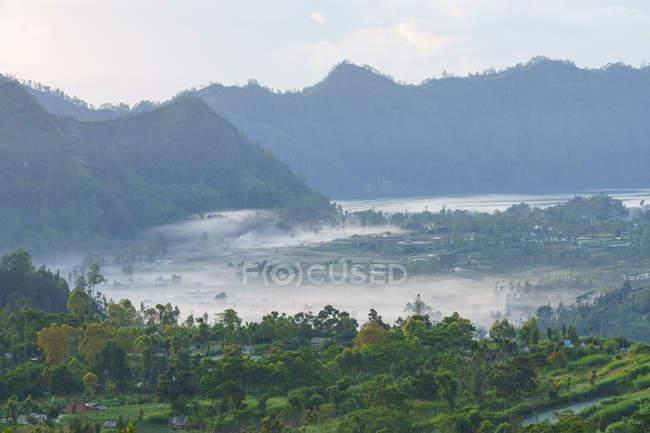 Індонезія, Балі, Kabu Bangli, туман над поля на вулкан Батура — стокове фото