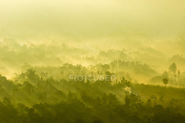 Indonesien, Bali, Kabliats Bangli, Ansicht des Vulkans Batur, Sonnenstrahlen und Nebel Winde über Wald — Stockfoto