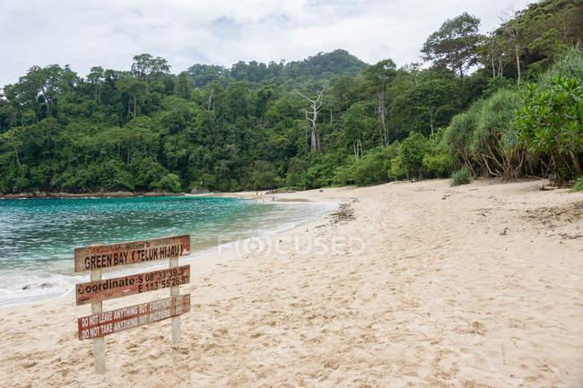 Джунглі Kabany Banyuwangi, меру Betiri Національний парк, Індонезії, Тимур Java в самотній beach на пляжі — стокове фото