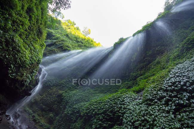 Indonésia, Java Timur, Pasuruan, Air Terjun Madakaripura, Cachoeira vista inferior — Fotografia de Stock