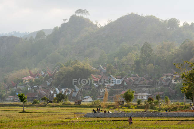 Indonesia, Sulawesi Selatan, Toraja Utara, tombs in the distance — Stock Photo