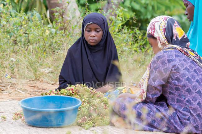 Tanzania, Zanzibar, Pemba Island, women with carnation at village — Stock Photo