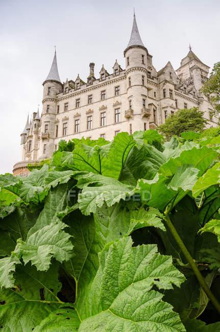 Regno Unito, Scozia, Highland, Golspie, Dunrobin Castle vista dal giardino verde — Foto stock