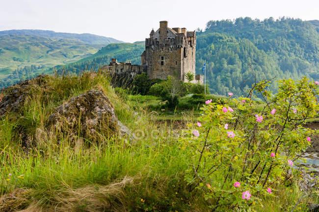 United Kingdom, Scotland, Highland, Dornie, Loch Duich, Eilean Donan Castle in green landscape — Stock Photo