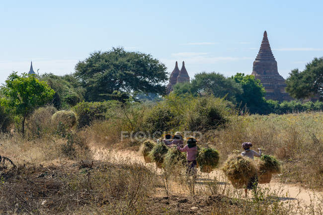 Myanmar (Burma), Mandalay Region, Old Bagan, Bulethi Pagoda — Stock Photo
