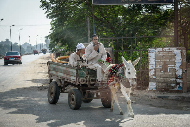 Egypt, Cairo Governorate, Sakkara, men in traditional clothing riding in cart with donkey — Stock Photo