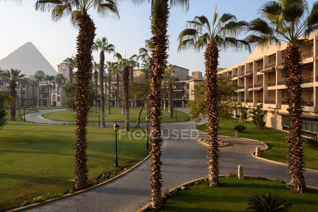 Parco presso il tradizionale hotel egiziano Mena House, Al Haram, Governatorato di Giza — Foto stock