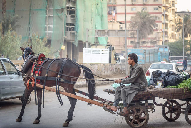 Man driving a horse drawn cart at city road, Cairo, Cairo Governorate, Egypt — Stock Photo