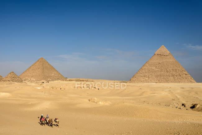 Єгипет, Гіза Gouvernement, Гіза, піраміди Гізи та чоловіків на верблюдах в пустелі пташиного польоту — стокове фото