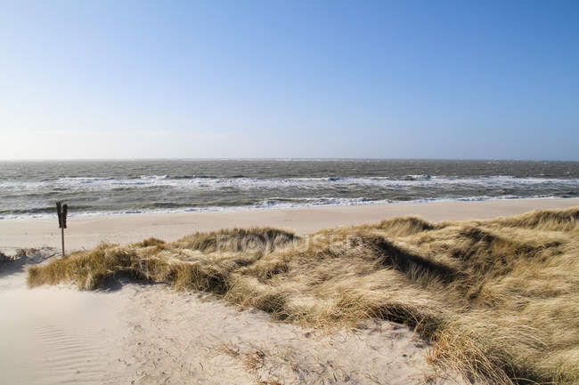 Germany, Schleswig-Holstein, Sylt, List, sunny day at sandy beach y sea — Stock Photo