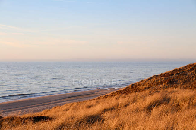 Germany, Schleswig-Holstein, Sylt, Wenningstedt, grassy beach in the evening light — Stock Photo