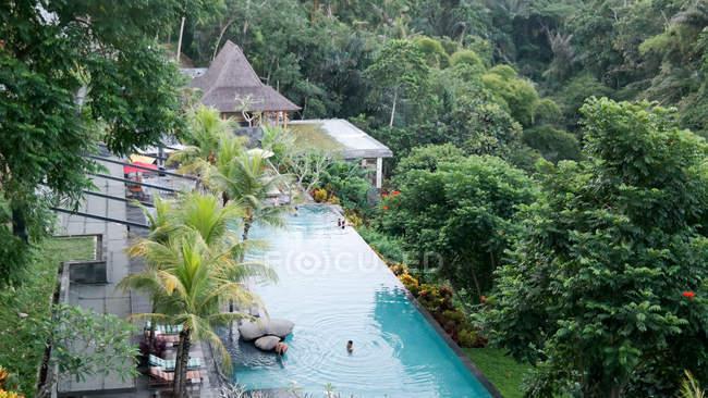 Indonésia, Bali, Kabedaten Gianyar, Peixe da selva — Fotografia de Stock