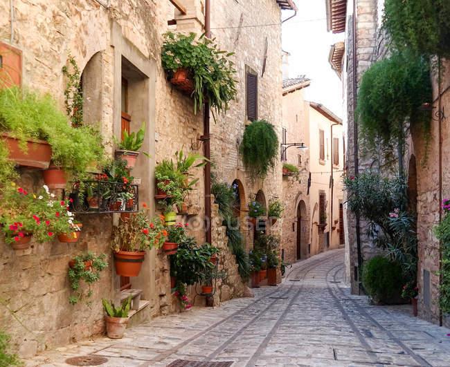 Italy, Umbria, Spello, alley in old town Spello — Stock Photo