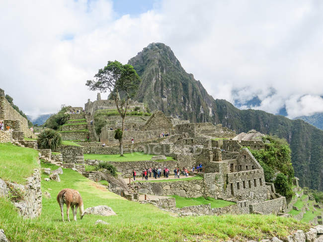 Peru, Cuzco, Urubamba, Machu Picchu — Stock Photo