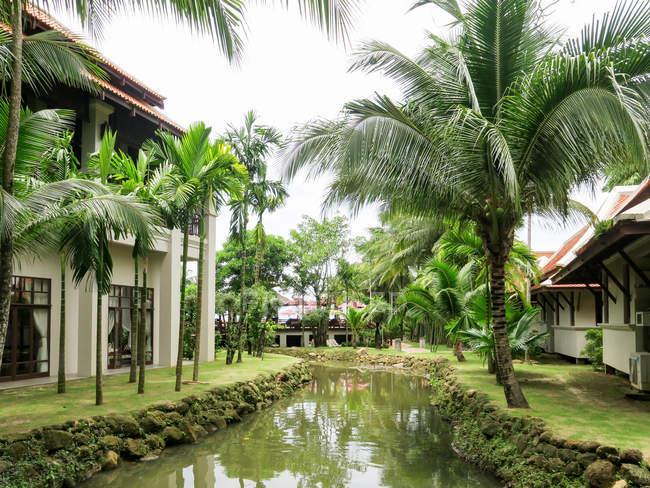 Thailand, Chang Wat Phang-nga, Tambon Khuekkhak, Laguna Resort, Khao Lak, hotel facility by the pond in green nature — Stock Photo