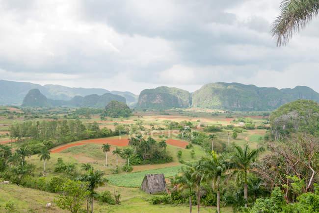 Cuba, Pinar del Rio, Vinales, vue aérienne de l'hôtel Los Jazmines à la vallée de Vinales — Photo de stock