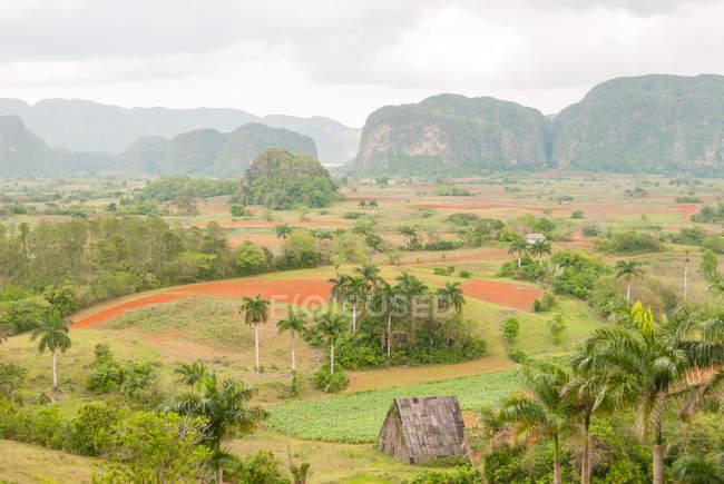 Cuba, Pinar del Rio, ales Vi, vue depuis l'Hotel Los Jazmines à Vinales Valley — Photo de stock