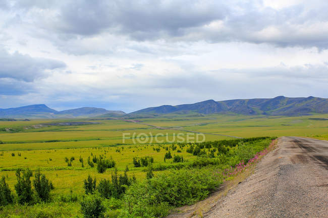 Canada, Yukon Territory, Yukon, On the Dampster Highway Judging North, scenic landscape with road through green medows, mountains on background — стоковое фото