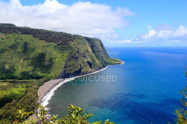 Stati Uniti d'America, Hawaii, Honokaa, panoramico paesaggio costiero con scogliere verdi in sole — Foto stock