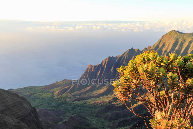 USA, Hawaii, Kapaa, Aerial view of Kalalau Valley, beginning of Jurassic Park — Stock Photo